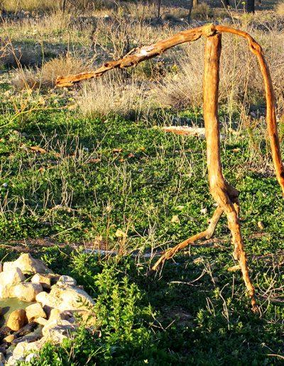 Bückling am Wasserloch', Mandelholz (wippt im Wind), mit Braun und Silber koloriert, Fundort Andalusien.