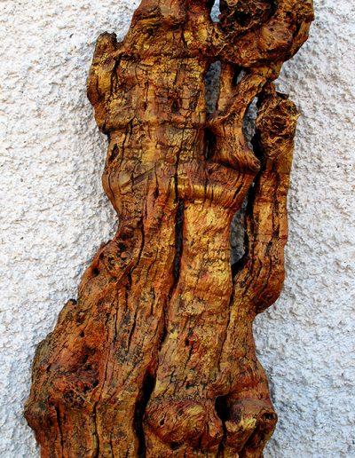 Schönheit mit Brüchen', altes Mandelholz, Fundort Andalusien, mit Gold und Schwarz koloriert.