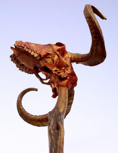 Auswüchse der Männlichkeit', Schädelpartie eines Ziegenbocks, Fundort Andalusien, mit Gold, Rot, Kupfer koloriert.