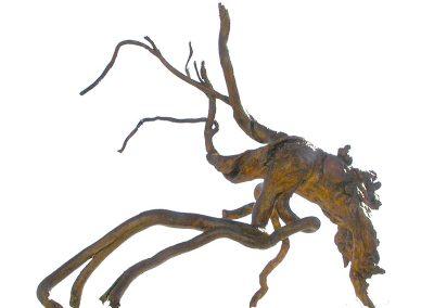 Oktopus versucht den Kopfstand', Kapernwurzel, Fundort Andalusien, leicht nachgebräunt.
